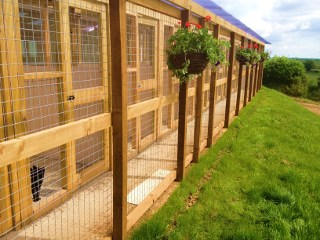 Cattery Front